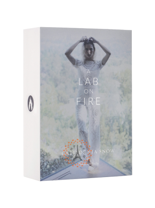 A Lab On Fire - California Snow