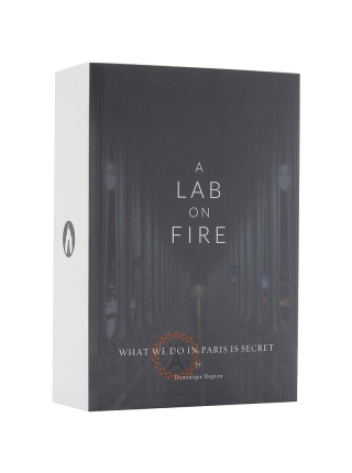 A Lab On Fire - What We Do In Paris Is Secret