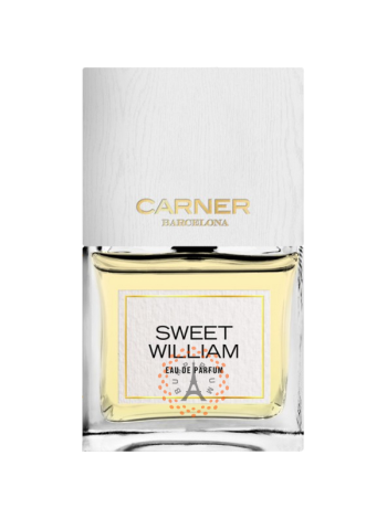 Carner Barcelona - Sweet William