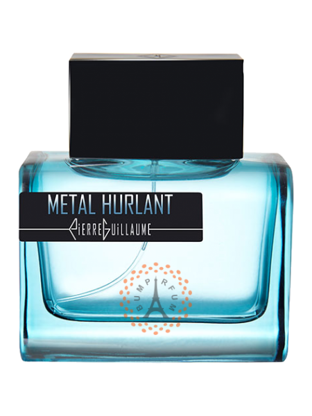 Pierre Guillaume - Metal Hurlant