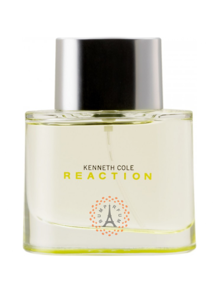 Kenneth Cole Reaction Men